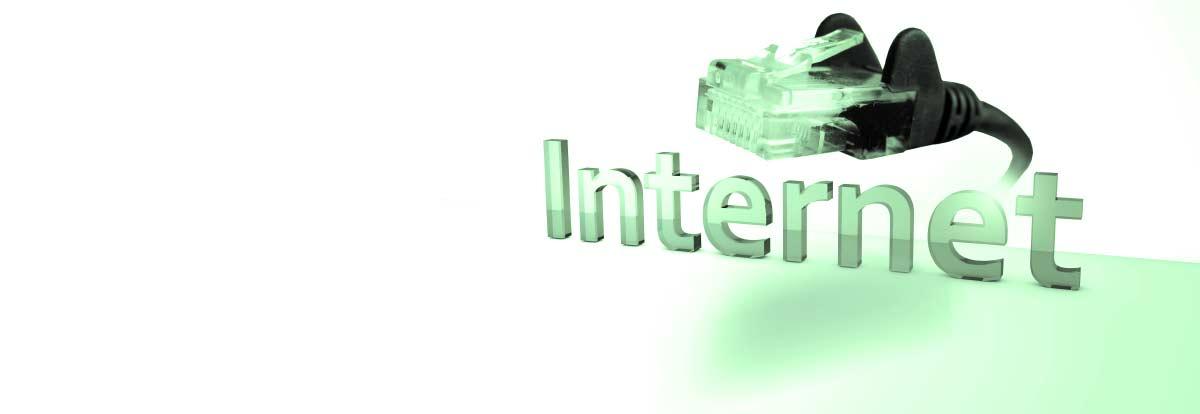 Wir bringen Sie sicher ins Internet!